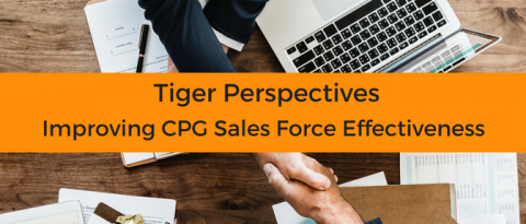 Improving CPG Sales Force Effectiveness in Emerging Markets